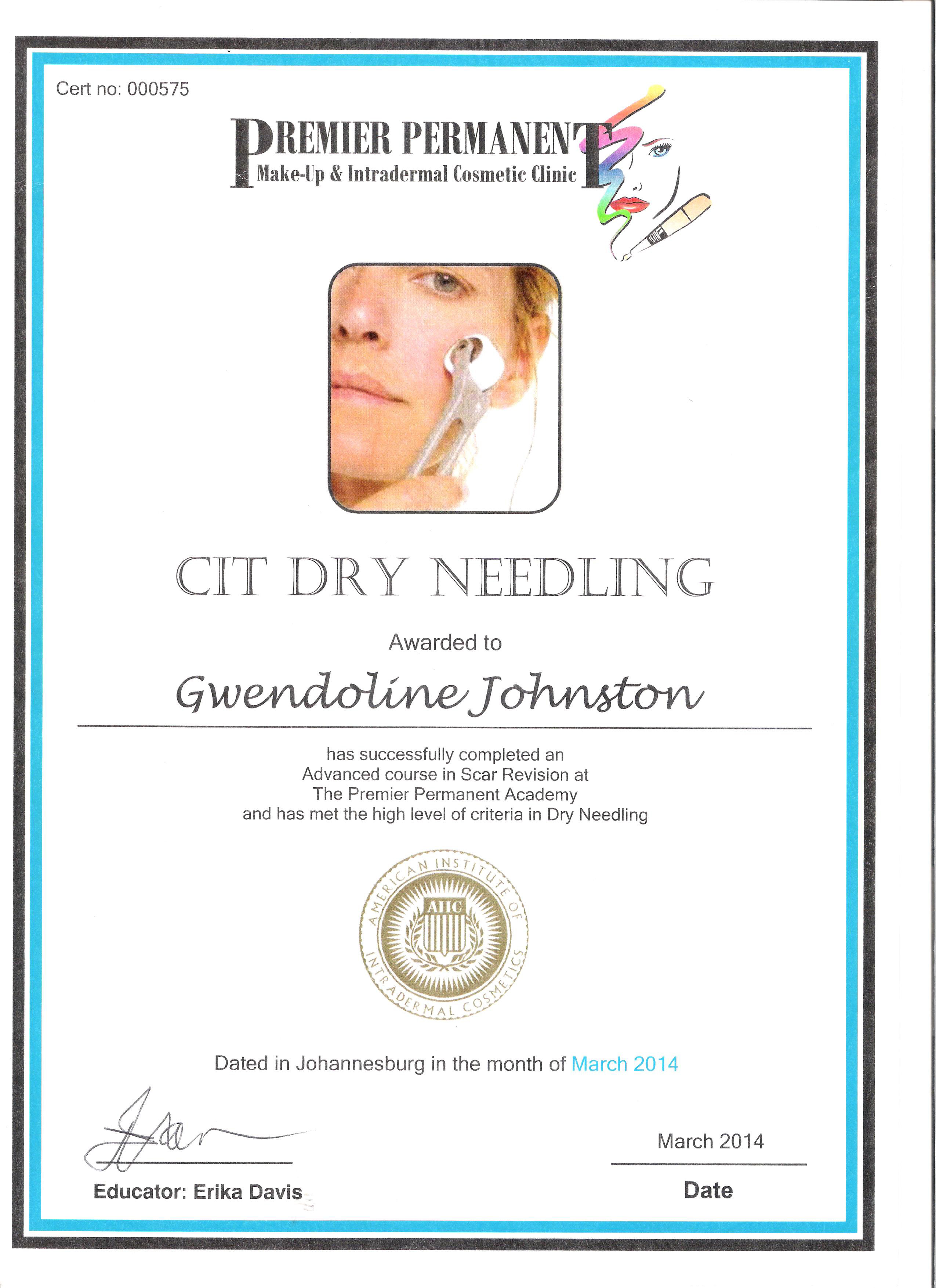 Cit Micro Needling Certificate Permanent Makeup By Gwendoline